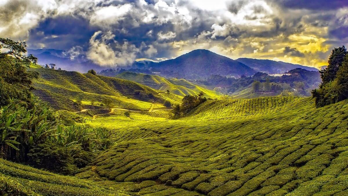 Malaysia Travel Guide & Magazine | Travel4History.com