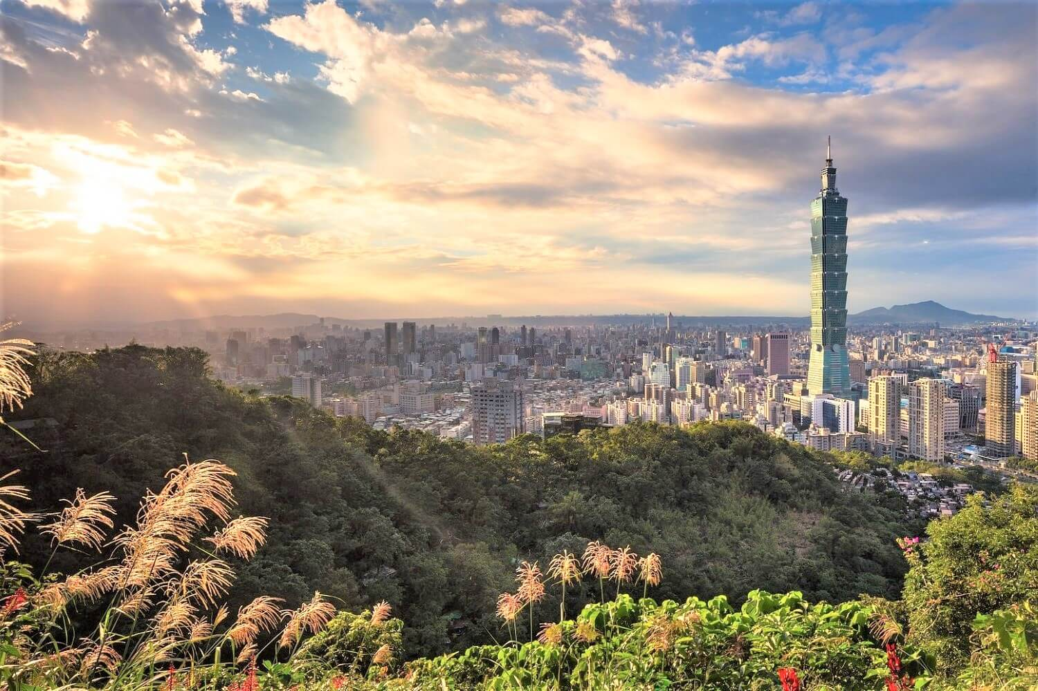 The Travel Guide of the Taipei 101 bamboo tower